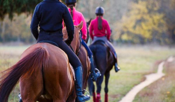 1 - Passeggiata a cavallo nel parco naturale di Barsento - Tedi Tour Operator