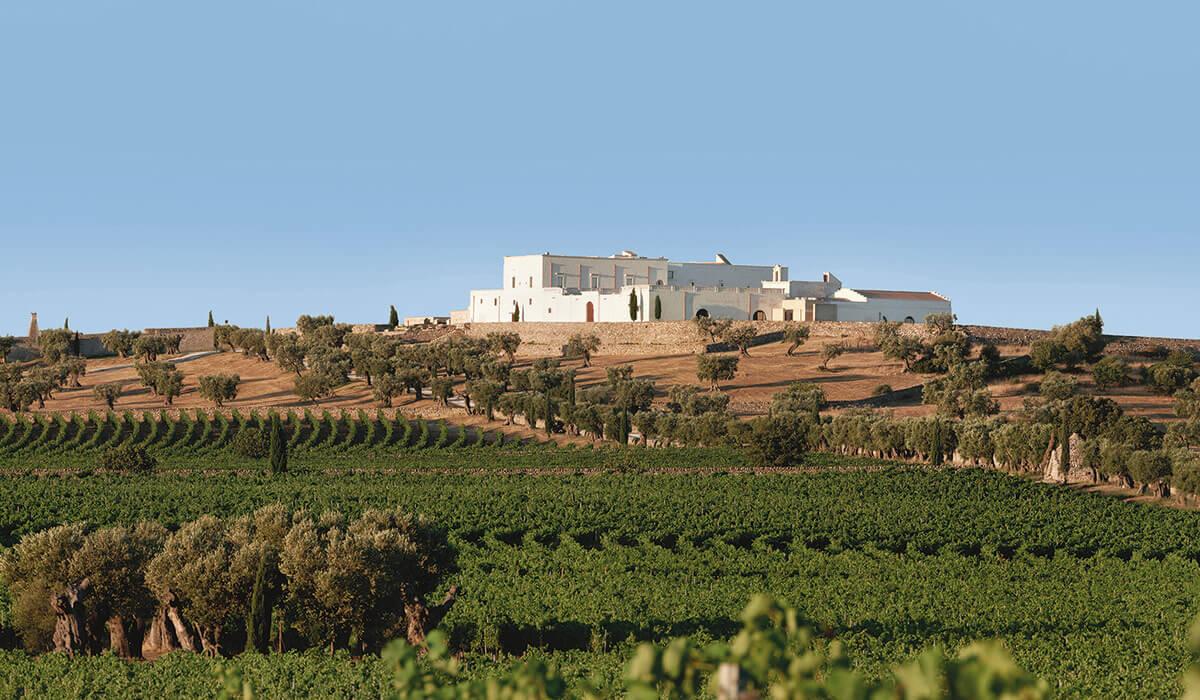 Masseria Amastuola Wine Resort - Tedi Tour Operator