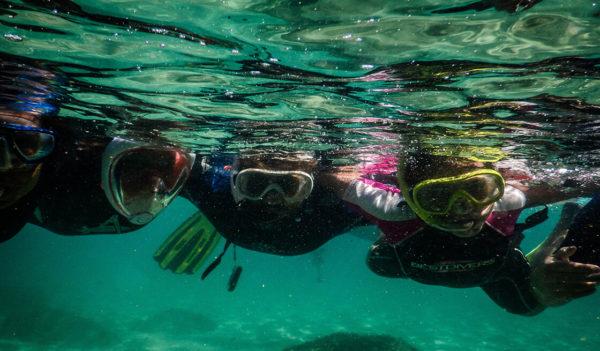 41 - Snorkeling in the blu dipinto di blu - Tedi Tour Operator